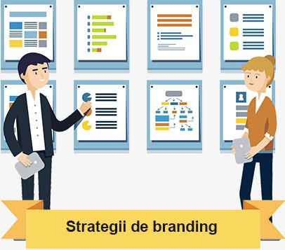 Construirea și promovarea imaginii unei campanii în spațiul web