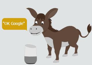 În 2050 Google Home va putea înțelege și ce spune măgărușul de companie